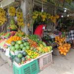 Jour 12 - Kandy visite de la ville 3