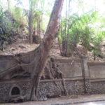 Jour 12 - Ubud en allant vers les rizières