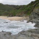Jour 15 - Kennett River sur la plage 4