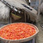 Jour 19 - Lombok 14 (sasak village)