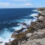 Jour 3 - Cape Solander 1