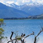 Jour 10 - Lake Wanaka déj 5