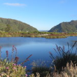 Jour 11 - Greymouth camping sauvage 9 (lac)