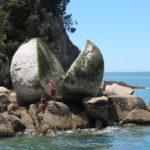 Jour 13 - Kaiteriteri bateau 3 (Split Apple Rock)