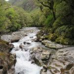 Jour 7 - Fiordland 47 - The Chasm