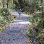 Jour 7 - Fiordland 8 - Humbolt Falls