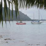 Jour 10 - Moorea bateau rouge