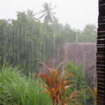 Jour 13 - Tahaa sous la pluie