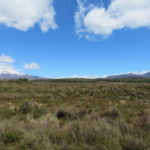 Jour 17 - Mont Ruapehu et Mont Ngauruhoe