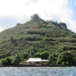Jour 6 - Moorea excursion en bateau 3 (flamboyant)