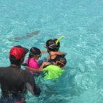 Jour 6 - Moorea halte requins et raies 2