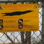 Jour 7 - Ferme des crocodiles de Koorana 8