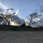 Jour 8 - plage de Yeppoon 3