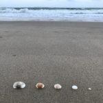 Jour 8 - plage de Yeppoon 7