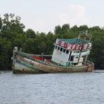 Jour 11 - Long-tail boat sur le Pak Nam à Krabi 5