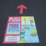Jour 15 - Jardin botanique de Sydney 2