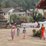Jour 10 - Luang Prabang Wat May Souvannapoumaram 6