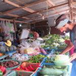 Jour 17 - légumes