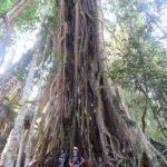 Jour 11 - Khao Yai National Park 11