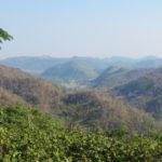 Jour 11 - Khao Yai National Park 2