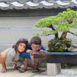 Jour 11 - Nagasaki Mogi 11