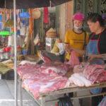 Jour 22 - Hanoï marché 2 (viande)