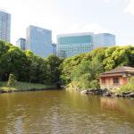Jour 4 - Jardin de Hama-rikyu 7