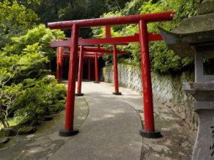 Jour 14 - Beppu Umi jigoku 5