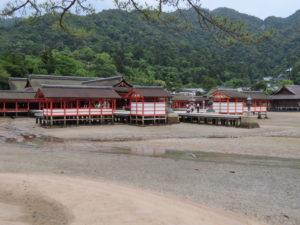 Jour 18 - Ile de Miyajima retour 4