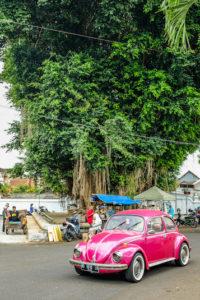 Jour 4 - Yogyakarta balade 4